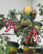 Walz Luit, Berbas Love